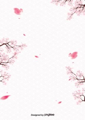 Hoa anh đào rơi cảnh lãng mạn Bằng Tay Tranh Hình Nền