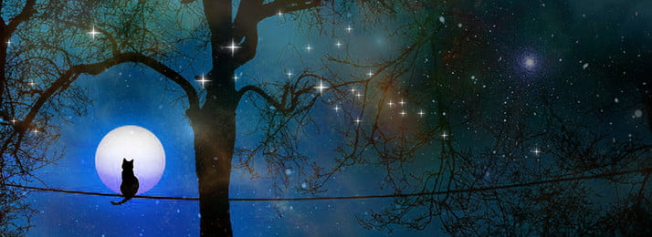 lonely kucing tengah malam latar belakang langit kucing langit malam langit berbintang bayangan, Malam, Langit, Kucing imej latar belakang