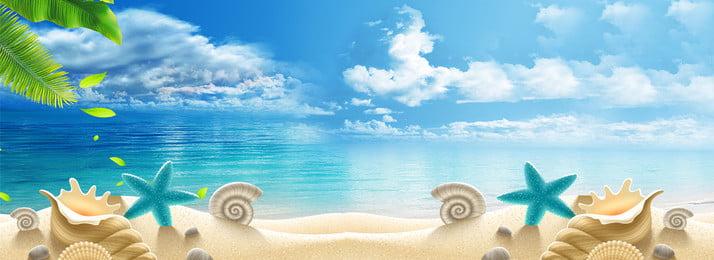 夏の新鮮な海の背景 ココナッツの木 ビーチ ヒトデ ブルー 葉っぱ 夏 新鮮な バックグラウンド, ココナッツの木, ビーチ, ヒトデ 背景画像