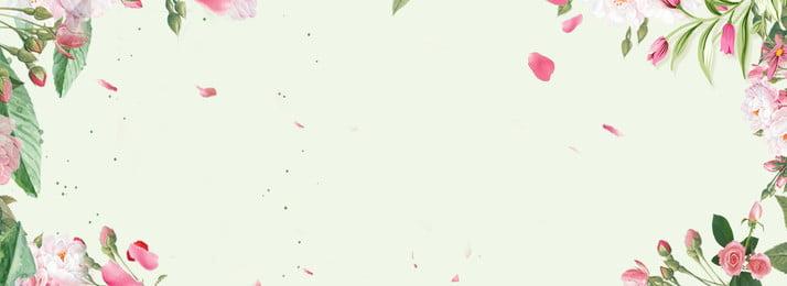 color plant flower natural, Texture, Decoration, Leaf Background image