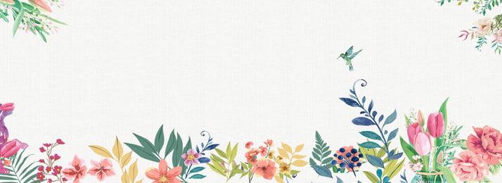 彩色植物葉子紋理背景 彩色 植物 葉子 環境 紋理 生長 自然 環境 裝飾 夏季, 彩色, 植物, 葉子 背景圖片