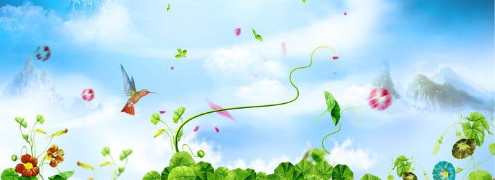 Dream Flowers Plant Banner, Flowers, Little Bird, Blue Sky, Background image