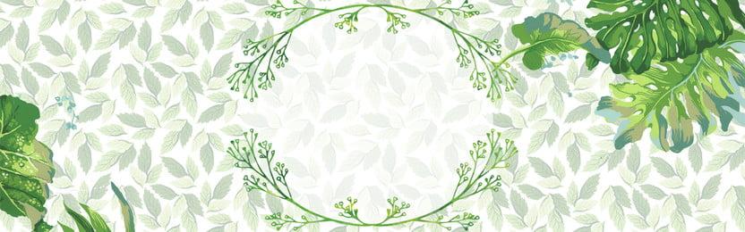 綠色清新樹葉背景 綠色 清新 背景 樹葉 手繪 綠框 簡約 其他 banner, 綠色清新樹葉背景, 綠色, 清新 背景圖片