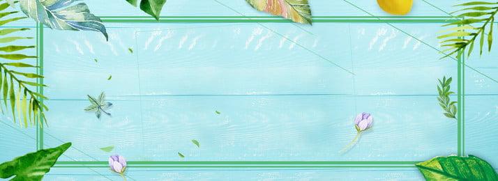 清涼一夏唯美綠色背景圖 綠色 樹葉 綠色 樹葉 背景裝飾圖案 唯美 綠, 綠色, 樹葉, 綠色 背景圖片