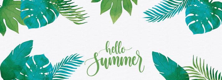 녹색 여름 식물 배경 녹색 여름 식물 자연 환경 배경 자라는 뜨거운, 녹색, 여름, 식물 배경 이미지