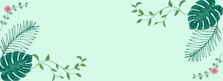 phim hoạt hình gió xanh lá màu xanh hoa nhỏ rừng yên, Trọt, Phim, Phim Hoạt Hình Gió Xanh Ảnh nền
