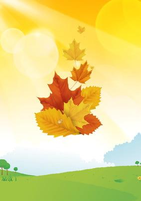 Maple Leaf Autumn PSD Layered Advertising Advertising Lá phong Mùa thu Nền Quảng Cáo Lá Hình Nền