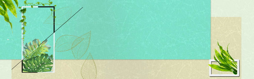 minimalistic background green plant cosmetics geometric background, Splice, Leaves, Frame Background image