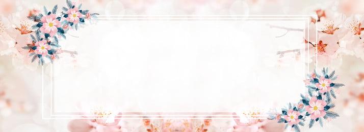 गुलाबी पौधे के फूल की पृष्ठभूमि गुलाबी पौधा फूल सजावट स्वाभाविक रूप से वातावरण डिब्बा पृष्ठभूमि, रूप, गुलाबी पौधे के फूल की पृष्ठभूमि, से पृष्ठभूमि छवि