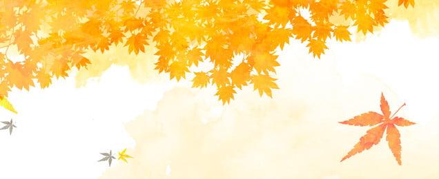 Biểu ngữ mùa thu màu vàng lãng mạn Lãng mạn Lá phong Trang Phẩm Mùa Hình Nền