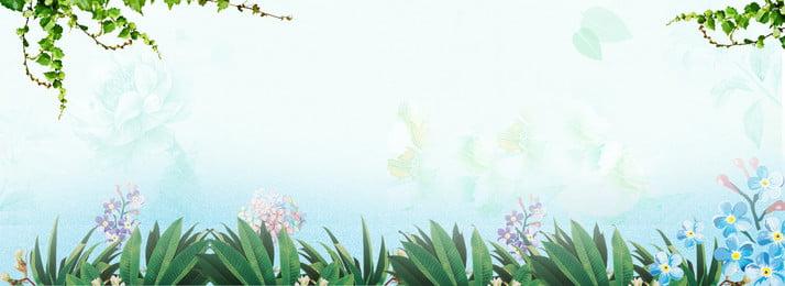 primavera flor fundo de ambiente de primavera primavera quente blossom banner imagem de, De, Quente, Blossom Imagem de fundo