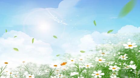 夏の新鮮なヒナギク青い空広告ポスター 夏 新鮮な デイジー 青い空 広告宣伝 ポスター 晴れの日 白い雲 夏 新鮮な デイジー 背景画像