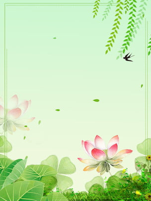 mùa hè tươi và đơn giản sen sen sen xanh gradient nền quảng cáo mùa hè tươi Đơn giản ao , Sen, Hoa, Mùa Ảnh nền
