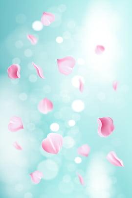 cánh hoa hồng màu xanh nhạt rơi nền 2018 mới nhất màu , Nhất, Màu, Truyền Ảnh nền