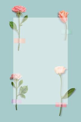 520 ngày Valentine ánh sáng màu xanh hồng hoa nền 520 ngày lễ Màu Nhạt Bay Hình Nền