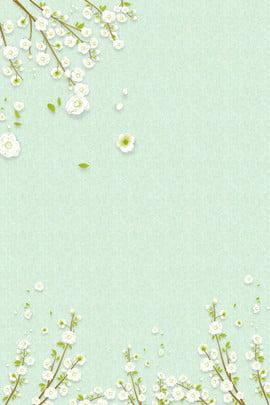 520情人節文藝海報淺綠色背景 520情人節 白色花簇 海報背景 白色花朵 淺綠色樹枝 psd分層 背景 , 520情人節, 白色花簇, 海報背景 背景圖片