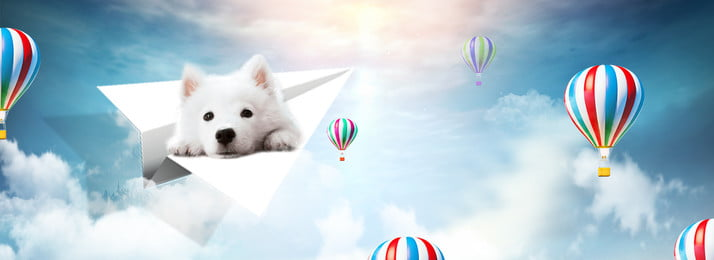 animal lovely float cloud, Paper Plane, Pet, Dog Background image