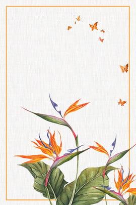 고대의 조류의 낙원 최소한의 배경 고대 스타일 전통 h5 배경 포스터 손으로 그린 포스터 조류의 , 그린, 포스터, 조류의 배경 이미지