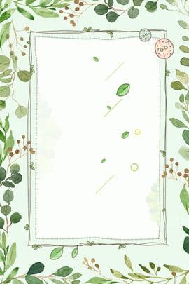 Tháng 8 Xin chào Fresh Hand Drawn Leaves Nền quảng cáo đơn giản Tháng 8 Xin chào Tươi Vẽ Giản Quảng Tay Hình Nền