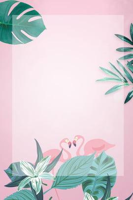 lá chuối hồng flamingo nền quảng cáo lá chuối hồng hạc màu , Cáo, Bối, Chuối Ảnh nền