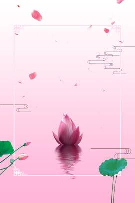 美しいピンクの池夏夏の背景 美しい ピンク 池 夏 夏 ロータス 蓮の葉 花びら リキシア 初夏 美しい ピンク 池 背景画像