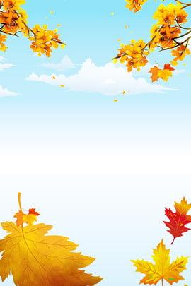 शरद ऋतु ताजा पोस्टर पृष्ठभूमि गिरावट ली किउ पड़ना मेपल का , पोस्टर, पतझड़, पत्ता पृष्ठभूमि छवि