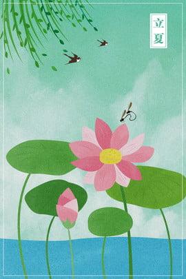 Lotus Lotus Leaf背景圖庫