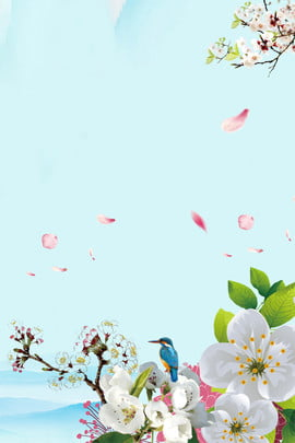 blue fresh flower branches and leaves , Petal, Simple, Literary Background image