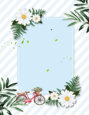 藍色清新花卉夏日廣告背景 藍色 清新 花卉 夏日 廣告 背景 白色花卉 清新背景 藍色 清新 花卉背景圖庫