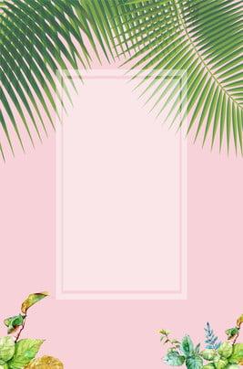 Mô hình nền lá dừa Phim hoạt hình Tay Màu Giản Hình Nền