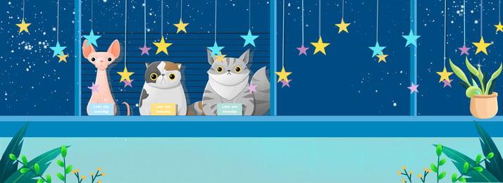 Cartoon cửa sổ đêm thức ăn vật nuôi nền Phim hoạt hình Phong Cưng Cửa Cưng Hình Nền