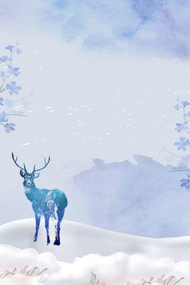sương lạnh màu xanh nai sừng tấm , Tuyết, Mùa đông, Nền Mùa đông Ảnh nền