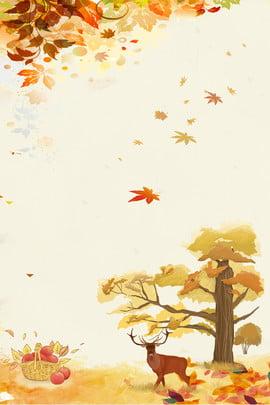 color plant creative maple leaf , Natural, Surroundings, Decoration Background image