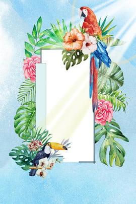 夏のポスターの背景画像 初夏 日光 オウム ヤシの葉 ブルー グリーン 熱い 軽い 夏 花 , 初夏, 日光, オウム 背景画像