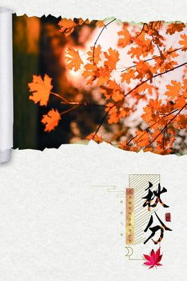 秋分節氣海報背景秋分節氣 秋天 秋季 二十四氣節 樹葉 金黃 葉子 樹枝 樹 , 秋分節氣海報背景秋分節氣, 秋天, 秋季 背景圖片