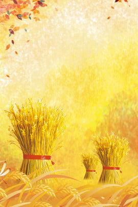 خلفية الخريف الاصطناعية الإبداعية سقط الأوراق المتساقطة الجنكة الصينية سبتمبر قمح ممتص , المتساقطة, الجنكة, الصدمات صور الخلفية