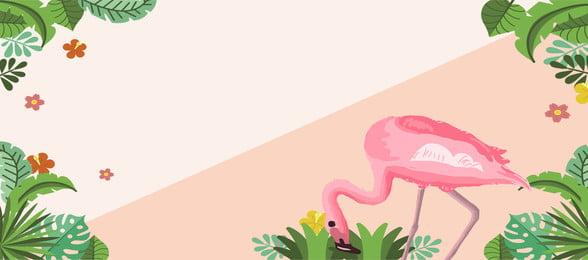 flamingo chống lại màu sắc lá chuối biểu ngữ nền poster hồng hạc màu tương, Cảnh, Hồng, Cảnh Ảnh nền