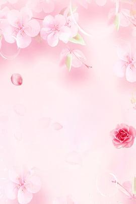 Văn học hoa đào bóng nền poster Hoa Hoa nền Tươi Lãng mạn Đơn Hồng Cánh Mạn Hình Nền