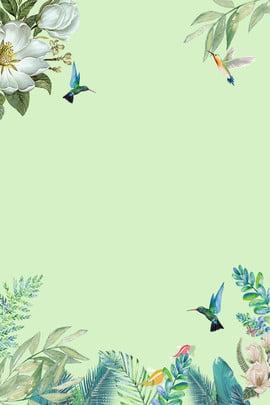 nền xanh đơn giản hoa con chim nhỏ hoa Đơn , Chim, Nhỏ, Hoa Ảnh nền