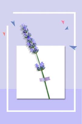 日系化妝品宣傳海報 清新 唯美 日系 文藝 花朵 光效 歐美海報 宣傳海報 海報 , 清新, 唯美, 日系 背景圖片