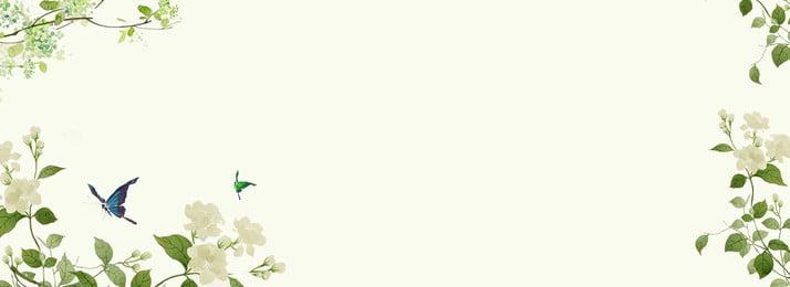 Màu xám sáng tạo trang trí hoa nền Xám Sáng tạo Nhà máy Tự Xám Sáng Màu Hình Nền
