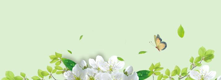 綠色創意植物裝飾夏季背景 綠色 創意 植物 自然 裝飾 花朵 背景 紋理, 綠色創意植物裝飾夏季背景, 綠色, 創意 背景圖片