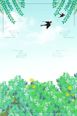 夏緑の花の新鮮でシンプルな文学的背景 グリーン 新鮮な 文学 支店 花 飲み込む パターン 空 白い雲 夏緑の花の新鮮でシンプルな文学的背景 グリーン 新鮮な 背景画像