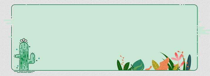 Green phim hoạt hình tối giản cây xương rồng hoa nền Màu xanh Đơn giản Phim Hoạt Green Phim Hình Nền