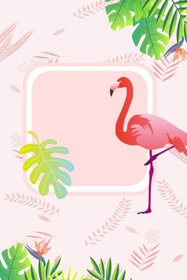 ins flamingo мультфильм рекламный фон ins Фламинго мультипликация реклама фон ins Фламинго мультипликация реклама фон , Ins Flamingo мультфильм рекламный фон, Ins, Фламинго Фоновый рисунок