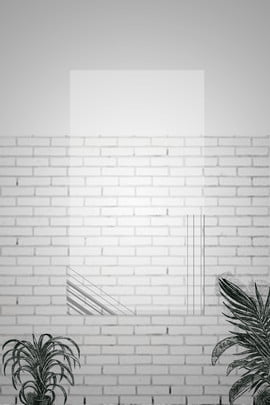 ins風簡約黑白豎圖 ins風 冷淡風 簡約 黑白 白磚牆 植物 盆栽 背景 豎圖 , Ins風, 冷淡風, 簡約 背景圖片