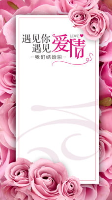 love couple white valentine rose , Gift, Bring Love Home, Romantic Valentines Day Background image