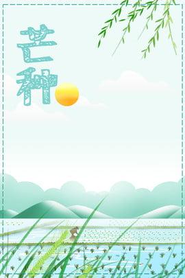 24 번째 태양 용어 배경 망고 종,푸른 색조,차가운 ,종,푸른,색조 배경 이미지