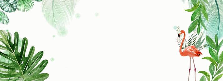 シンプルな新鮮な緑の葉のポスターの背景 純赤い風 グリーンプラント 葉っぱ フラミンゴ 新鮮な 単純な 新鮮な葉 緑の葉, 純赤い風, グリーンプラント, 葉っぱ 背景画像