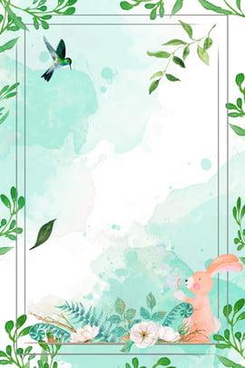 봄에 새로운 합성 배경 봄에 새로운 버드 봄 토끼 국경 식물의 경계 크리에이티브 단순한 , 경계, 크리에이티브, 단순한 배경 이미지